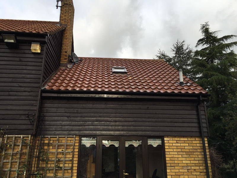 Roof after BioWash treatment
