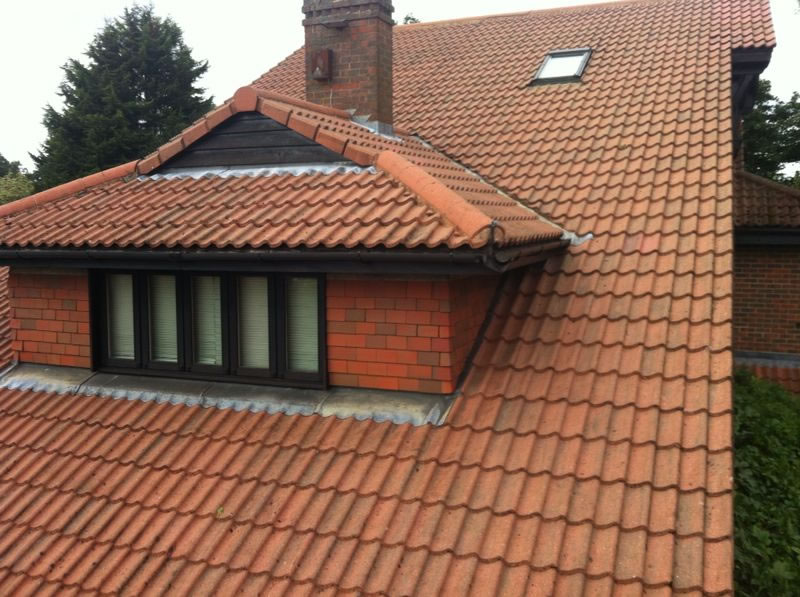 roof tiles after cleaning