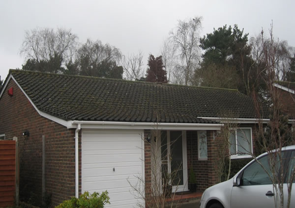 Bungalow roof before cleaning