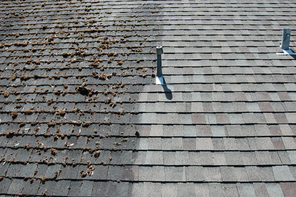 Roof Cleaning Roof Moss Removal Non Pressure Roof Cleaning